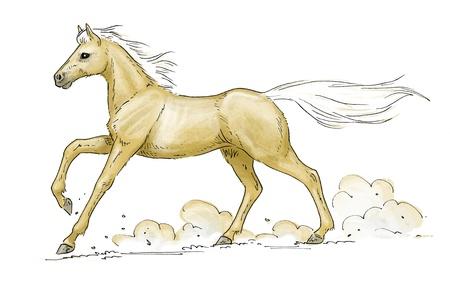 illustration of a galloping palomino horse