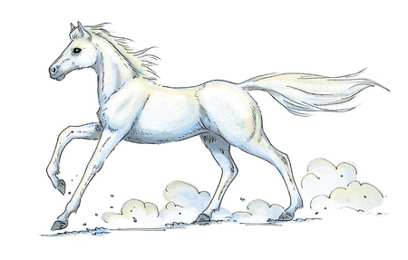 illustration of a galloping white horse Stock Photo