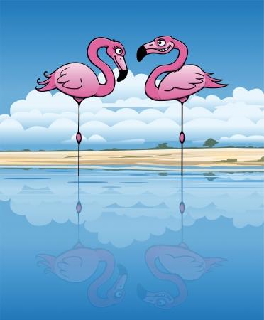 Due flirtare fenicottero in un lago africano Vettoriali