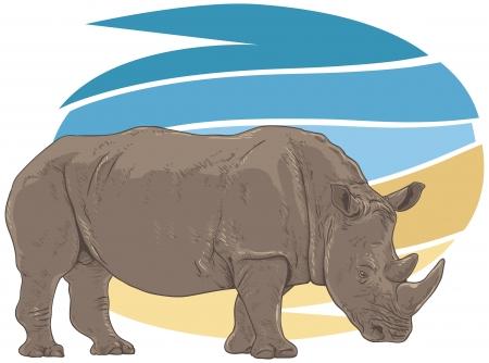 big five: Rhino Illustration Illustration