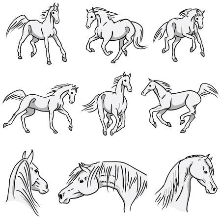 sketch: Galloping Arabian Horses