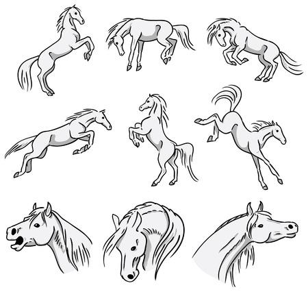 Allevamento, in controtendenza e saltando cavalli arabi Vettoriali
