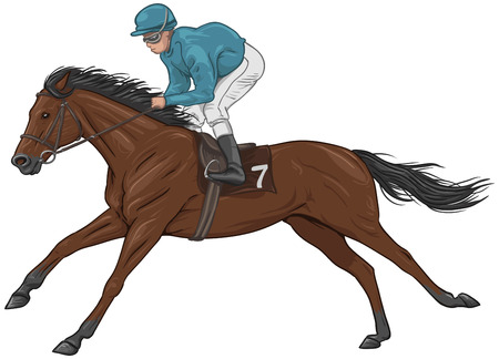 horse riding: Jockey on a brown racehorse Illustration