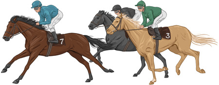 horse riding: Three jockeys on their racehorses Illustration
