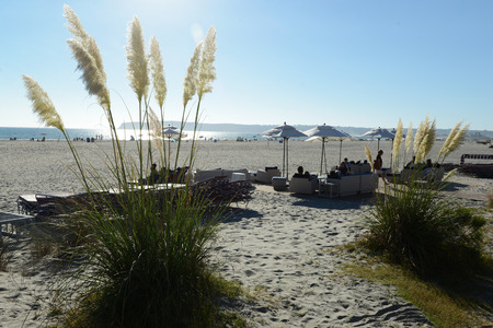 Coronado Hotel San Diego Beach Editorial