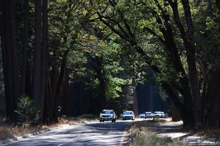 Vue de paysage de paysage du parc national de Yosemite Banque d'images - 85176548