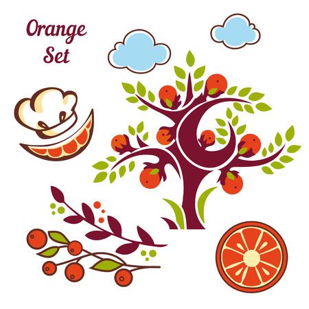 branch cut: Orange set