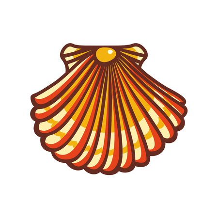 cockleshell: Seashell. Seashell Icon. Seashell isolated. Illustration