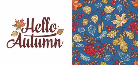 Hello Autumn lettering phrase text. Autumn leaves seamless pattern with Rowan, maple, birch and oak. Fall leaf design.Foliage forest leaf vector. Red, Green, brown and yellow falling autumn leaves