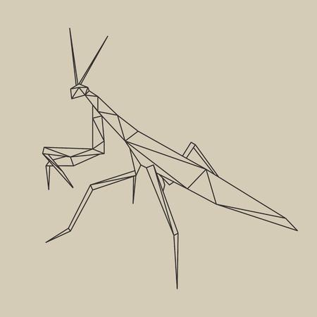 Origami poligonal line style mantis. Vector illustration.