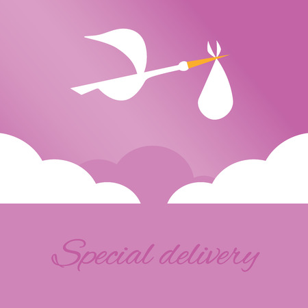sweet baby girl: Logo design element. Stork delivering baby in a bag for birth announcement.