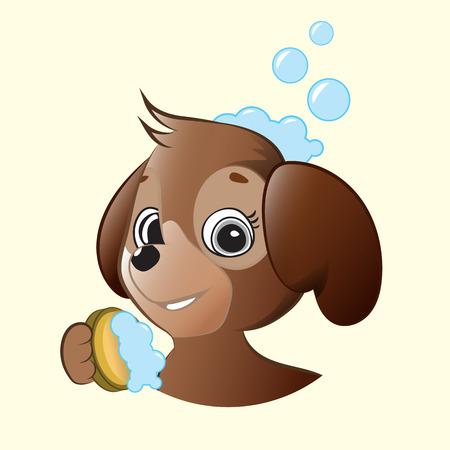 cute dog: Cute Brown Dog Holding Sponge With Foam.