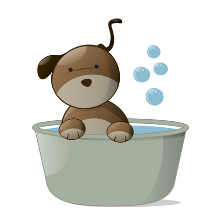 wet: Cute Dog in a Tub Isolated on White Background.