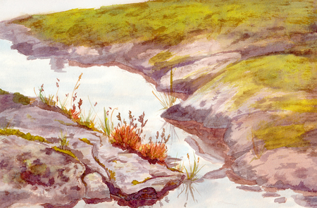 brook: Watercolour drawing - view with rock shore of brook with grass and moss