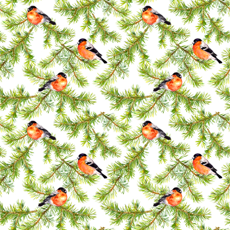 christmas watercolor: Watercolor hand painted seamless repaeting pattern with birds in pine branches Stock Photo