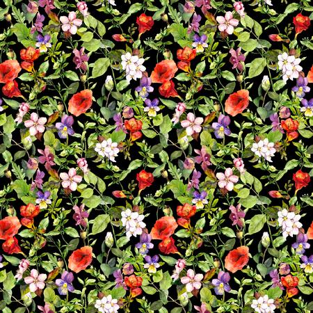 campo de flores: Prado con hierba, flores de verano, hierbas silvestres. Fondo floral transparente. Acuarela