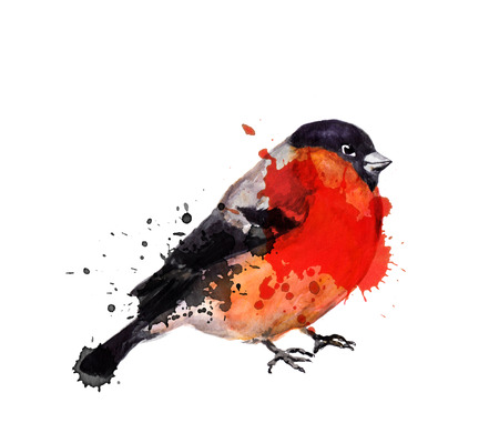 nature one painted: Watercolor winter bird - bullfinch with blots in artistic style Stock Photo