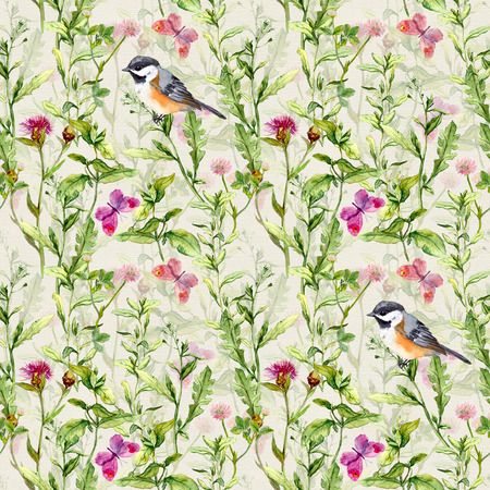 water bird: Meadow with butterflies, birds and herbs. Seamless watercolor floral pattern. Stock Photo