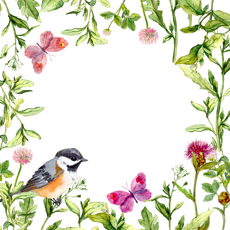Meadow with butterflies, birds and herbs. Seamless watercolor floral pattern. Stock Photo