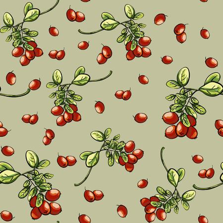bacca: Texture with red billberry