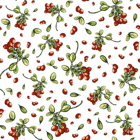 bacca: White seamless pattern texture with red billberry Illustration
