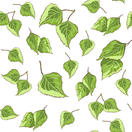 background pattern: Background pattern texture with green birch leaves