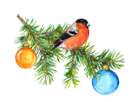 Robin: Cute new year illustration with tit bird and baubles, watercolor