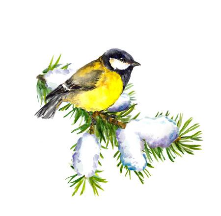 tit bird: Cute new year illustration with tit bird, watercolor Stock Photo