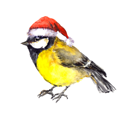 tit: Watercolor winter bird - tit in the red hat, hand made