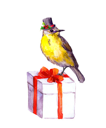 high hat: Adorable christmas bird in high hat on present box. Watercolour