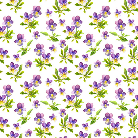 viola: Botanical seamless backdrop with pretty violet viola flowers on paper texture Stock Photo