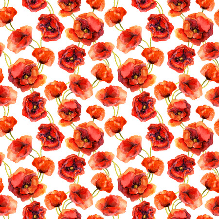 poppies: Seamless floral pattern with poppies. Watercolour hand made design