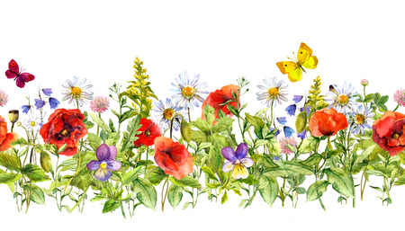 Floral horizontal border for fashion design. Watercolor wild flowers, grass, herbs. Repeated frame Фото со стока
