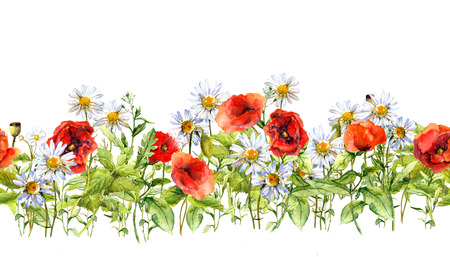 Floral horizontal border for fashion design. Watercolor wild flowers, grass, herbs. Repeated frame Stock Photo