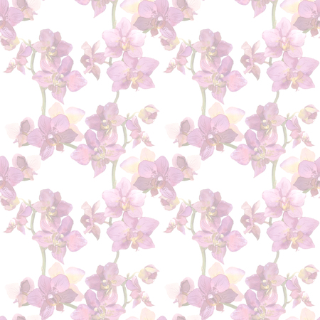 inconspicuous: Seamless floral background with orchid flowers. Hand painted watercolor drawing Stock Photo