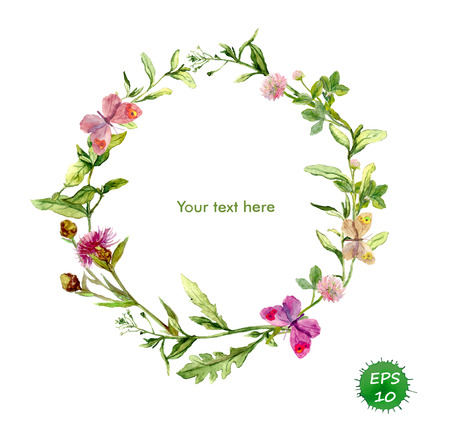 夏のハーブ、草原の花と蝶花輪枠。水彩ベクトル