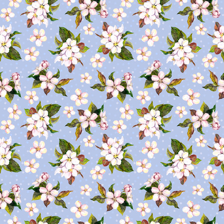japanese apricot: Seamless floral template with aquarelle painted apple and cherry flowers blossom, isolated