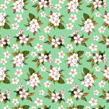 blossom background: Seamless floral template with aquarelle painted apple and cherry flowers blossom, isolated
