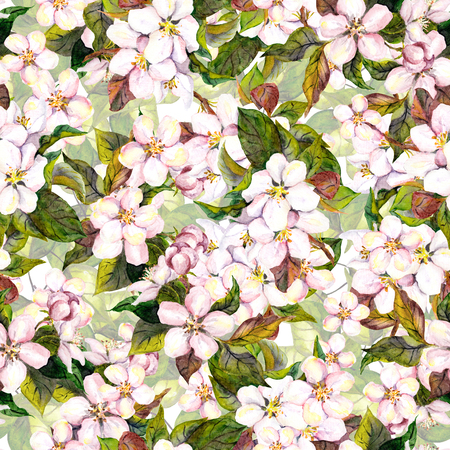 aquarelle: Seamless floral template with aquarelle painted apple and cherry flower blossom isolated
