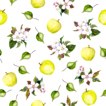 apple blossom: Seamless floral template with aquarelle painted apple flowers and cherry flowers blossom isolated