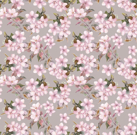 aquarelle: Seamless floral template with aquarelle painted apple and cherry flowers blossoming, isolated Stock Photo