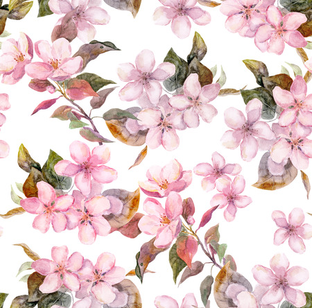 Seamless floral template with aquarelle painted apple and cherry flowers blossoming, isolated Stock Photo