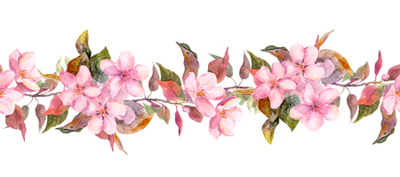 japanese apricot: Seamless floral template with aquarelle painted apple and cherry flowers blossoming, isolated Stock Photo