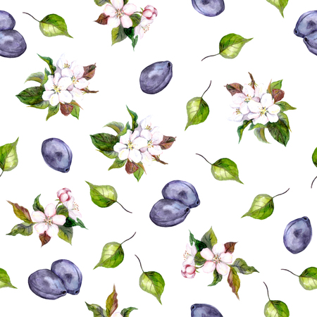 Seamless floral template with aquarelle painted plum flowers blossoming