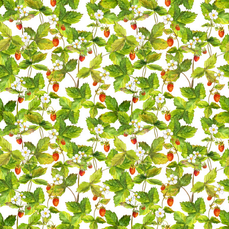 wild strawberry: Seamless repeated pattern with field of wild forest strawberry. Watercolour.