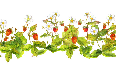 Seamless repeated pattern with field of wild forest strawberry. Watercolour.