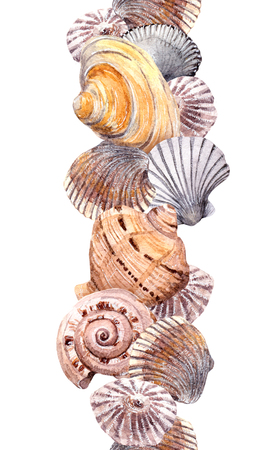 Sea shell swatch on white background. Watercolor drawing