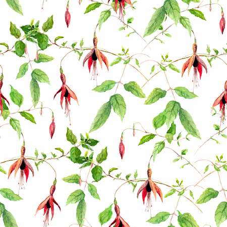 fuchsia color: Pink fuchsia flowers. Repeating floral pattern. Water color isolated