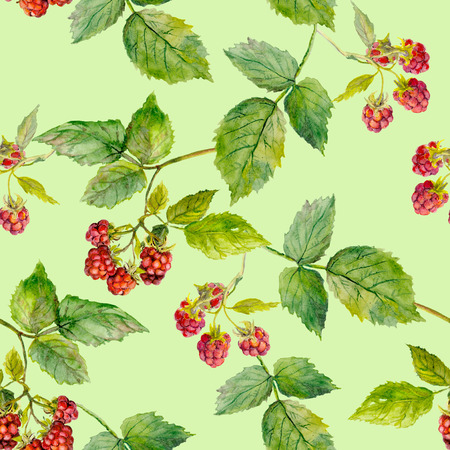 Seamless pattern with hand painted raspberry, floral background