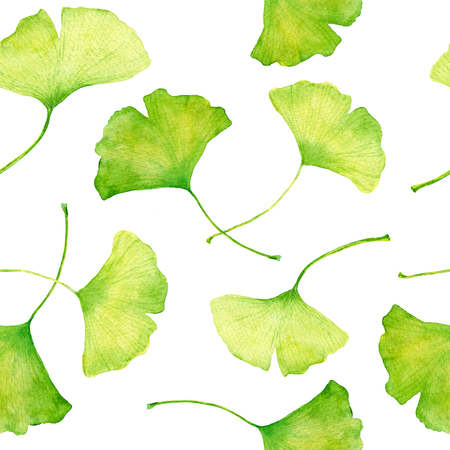 Ginkgo leaves seemless floral pattern, watercolour background